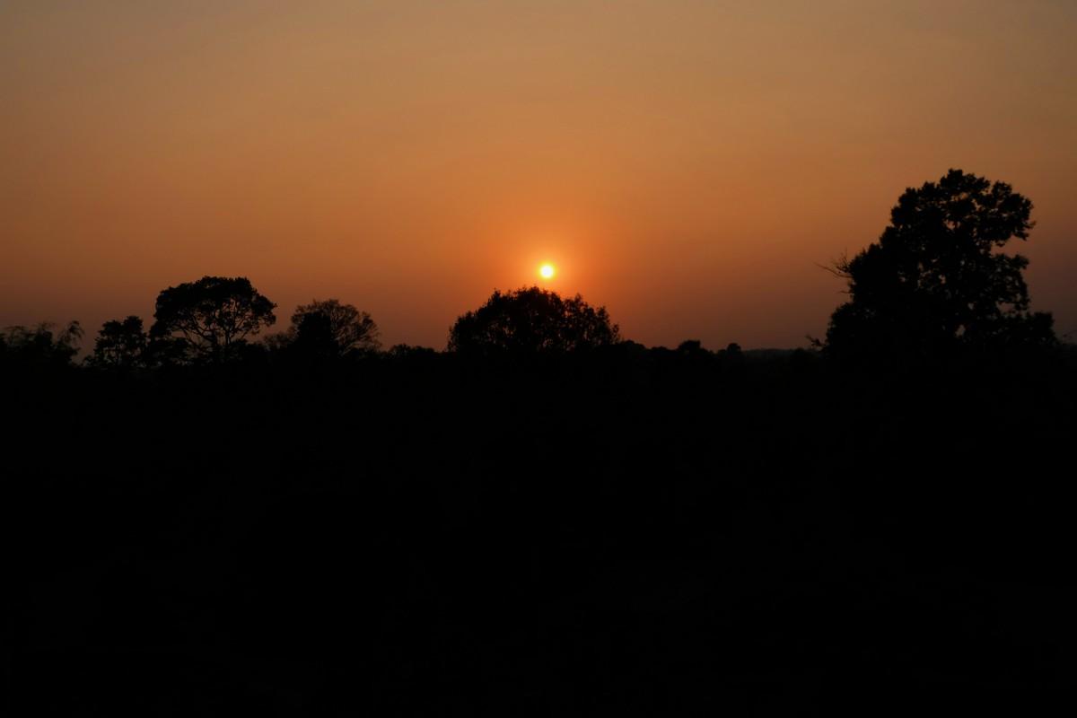 Siem Reap, Day 3: Angkor Archaelogical Park (2ndDay)