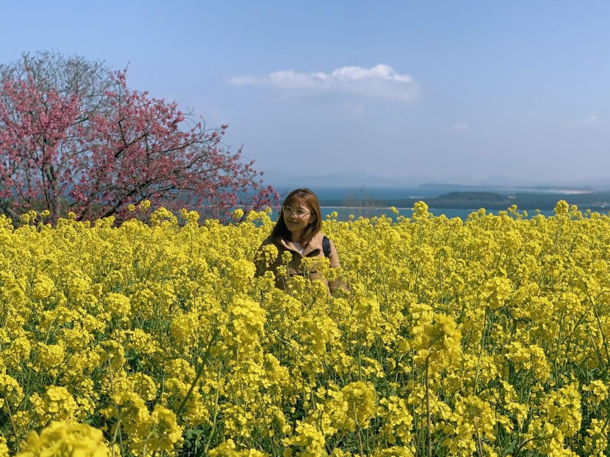 Kyushu, Day 12:Nokonoshima