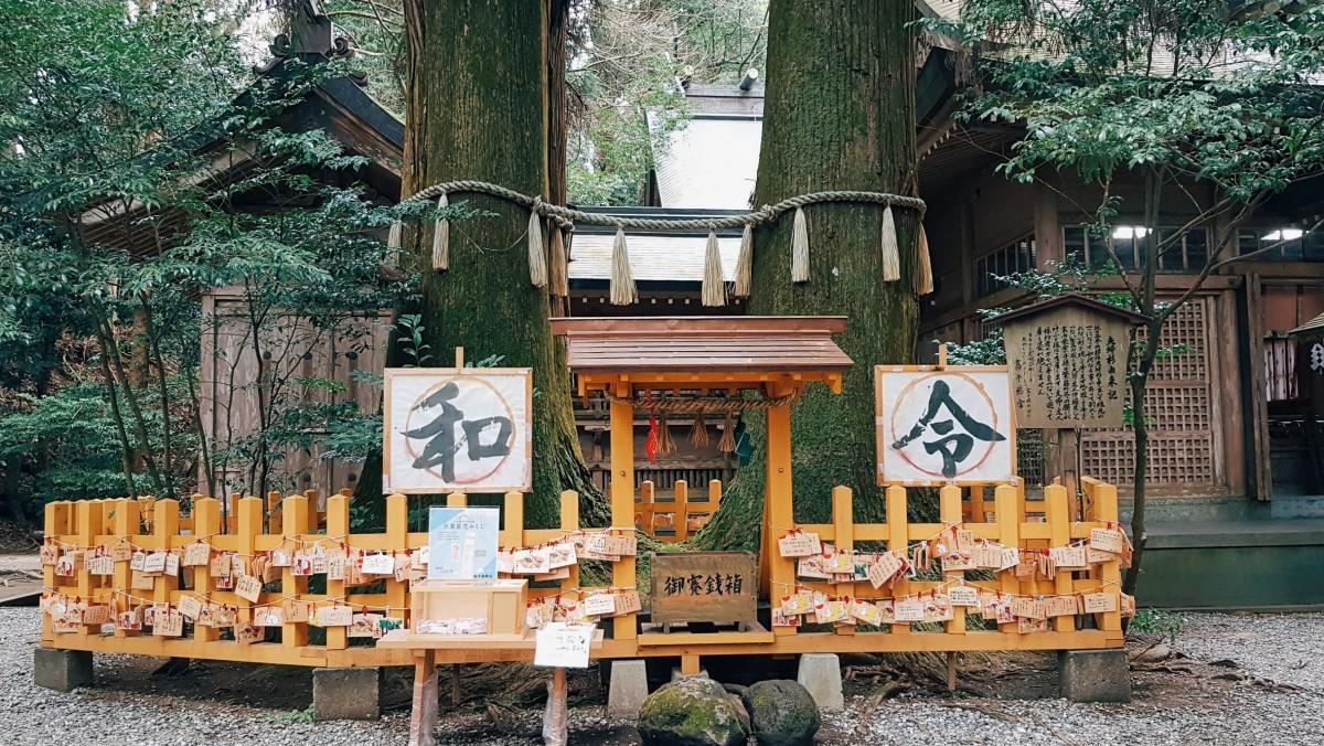 Kyushu, Day 6: More of TakachihoTour